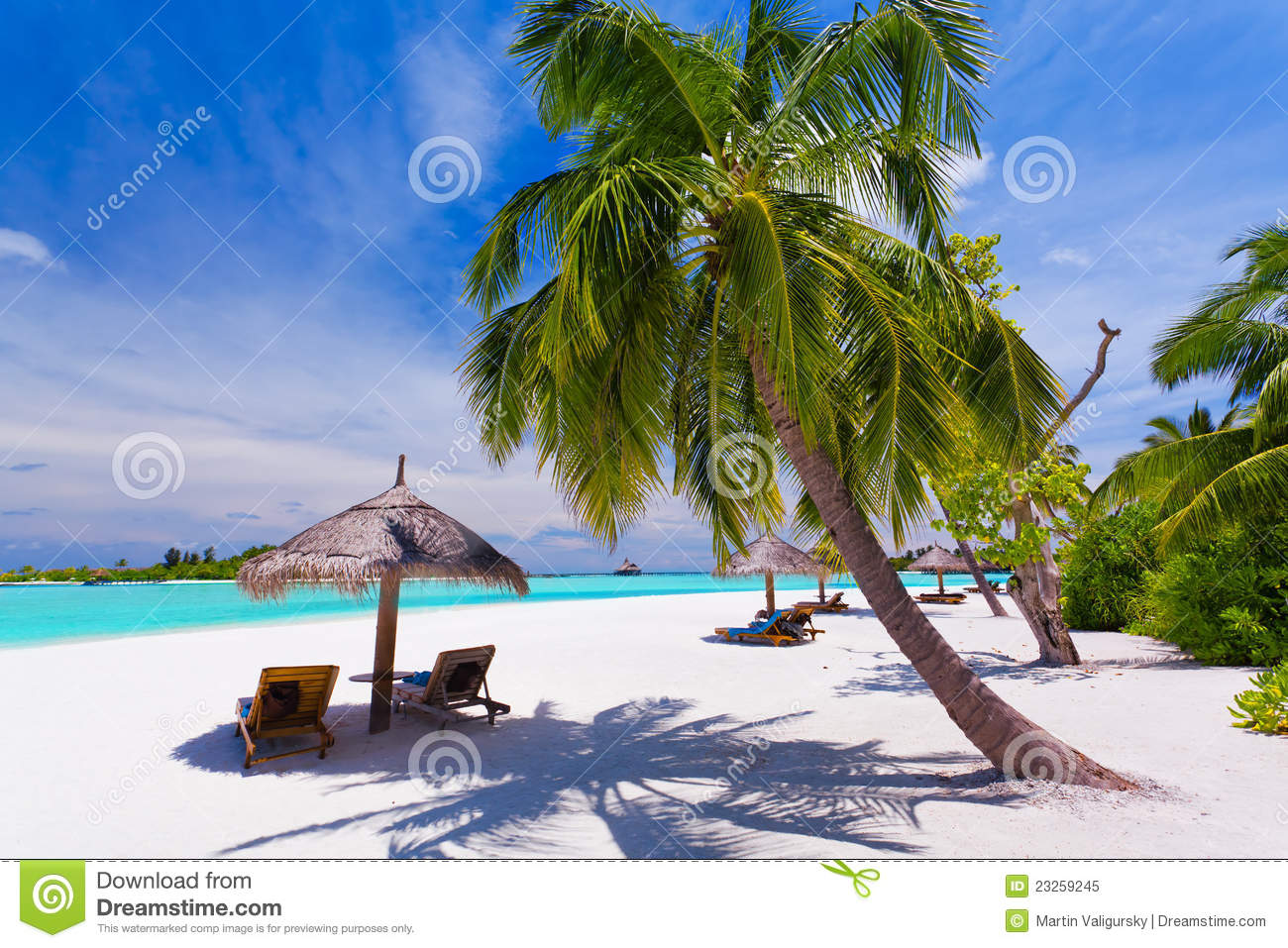 Deck Chairs Under Palm Trees On A Tropical Beach Stock