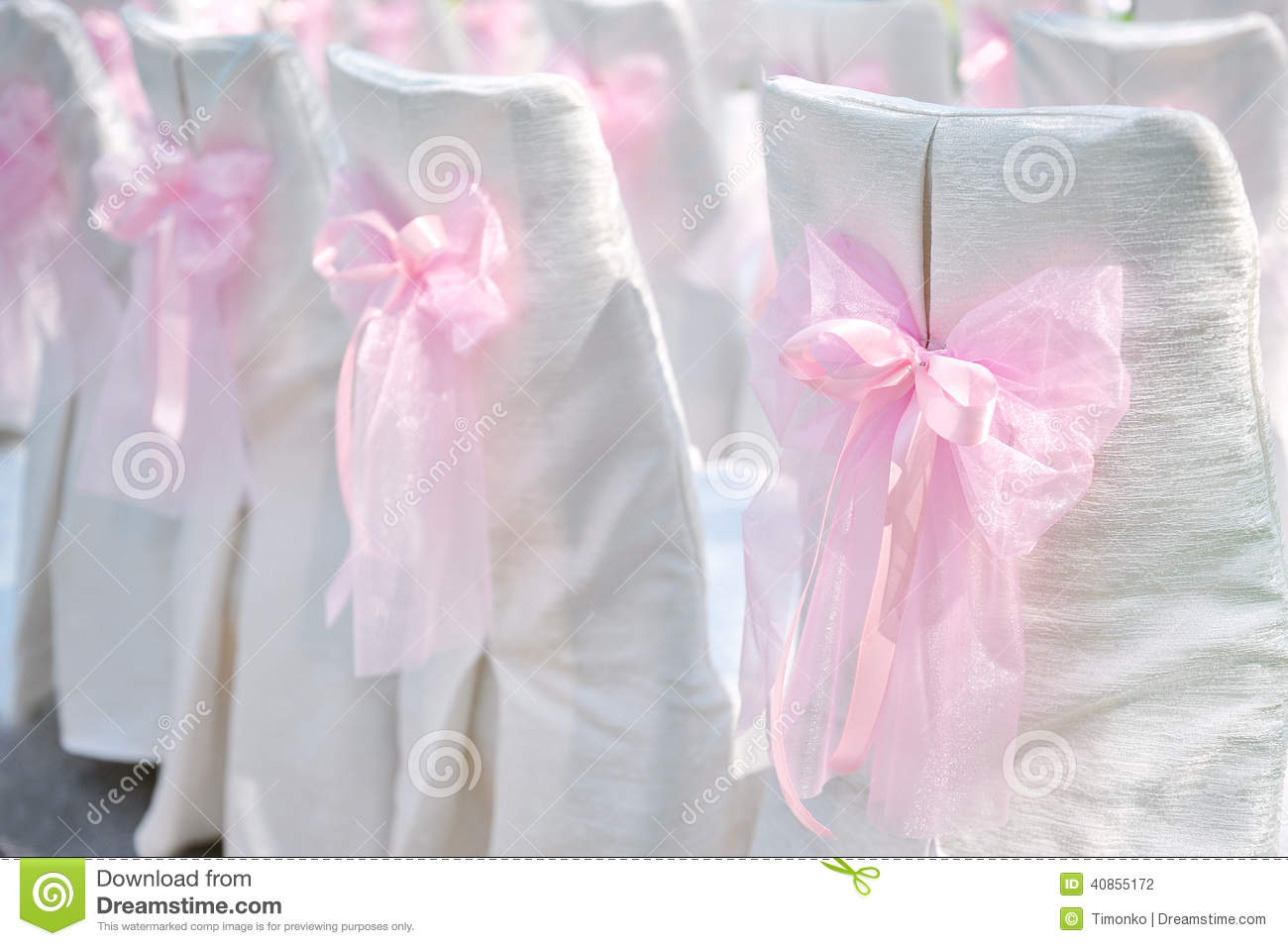 chair covers with pink bows sturdy camping decoration on wedding chairs bow stock photo image
