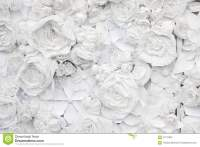 Decorative Background From White Paper Flowers Stock Photo ...
