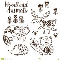 Stock Illustration Decorative Ornamental Woodland Vector Set Animal Coloring Pages Kids Hand Drawn White Background Book Image For Androids Hd Pics