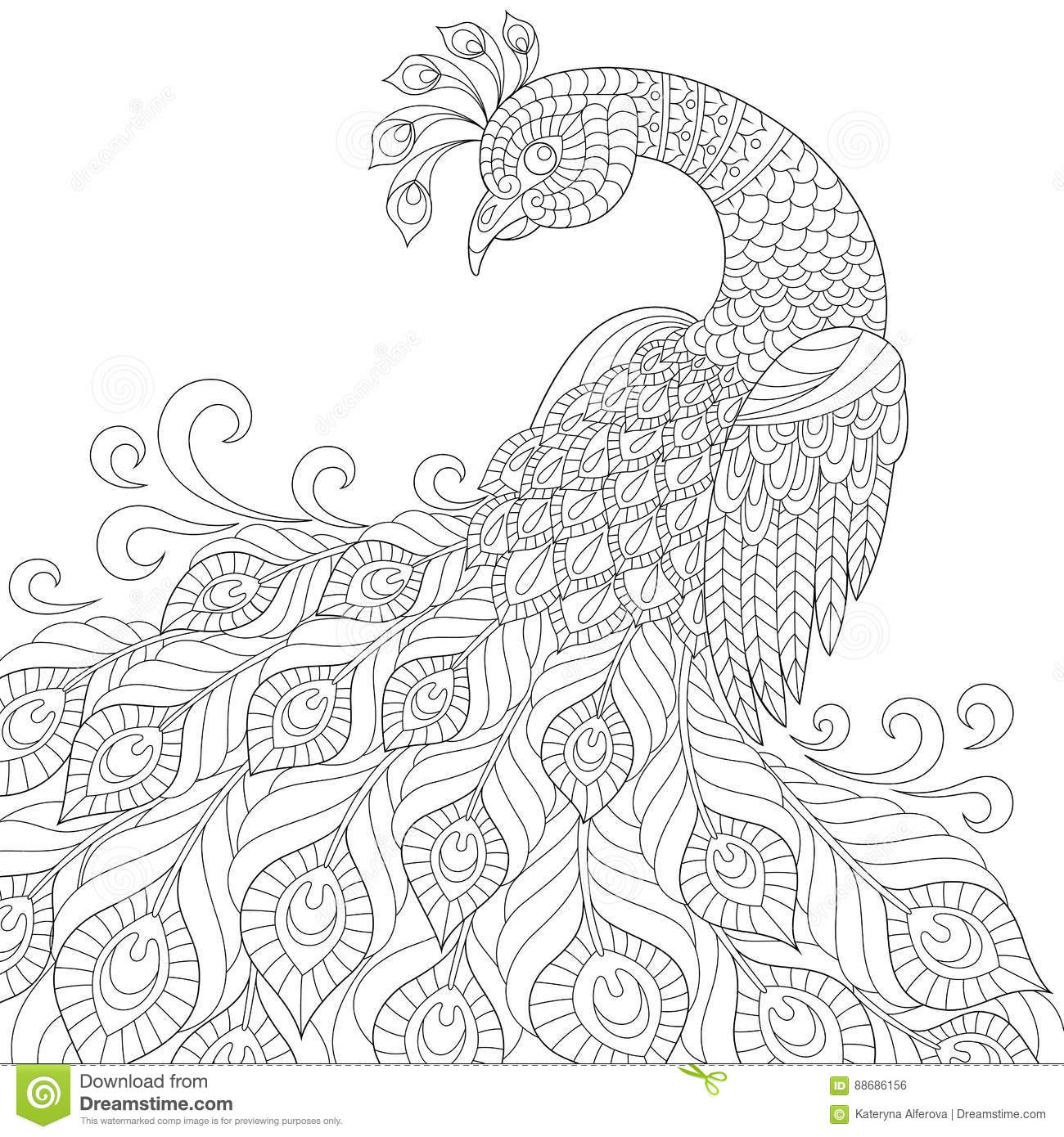 Decorative Peacock Adult Antistress Coloring Page Stock
