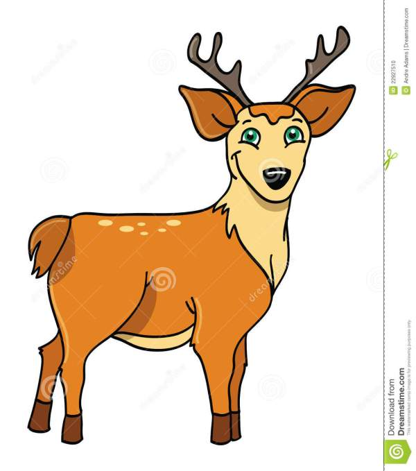 Deer With Antlers Stock - 22927510