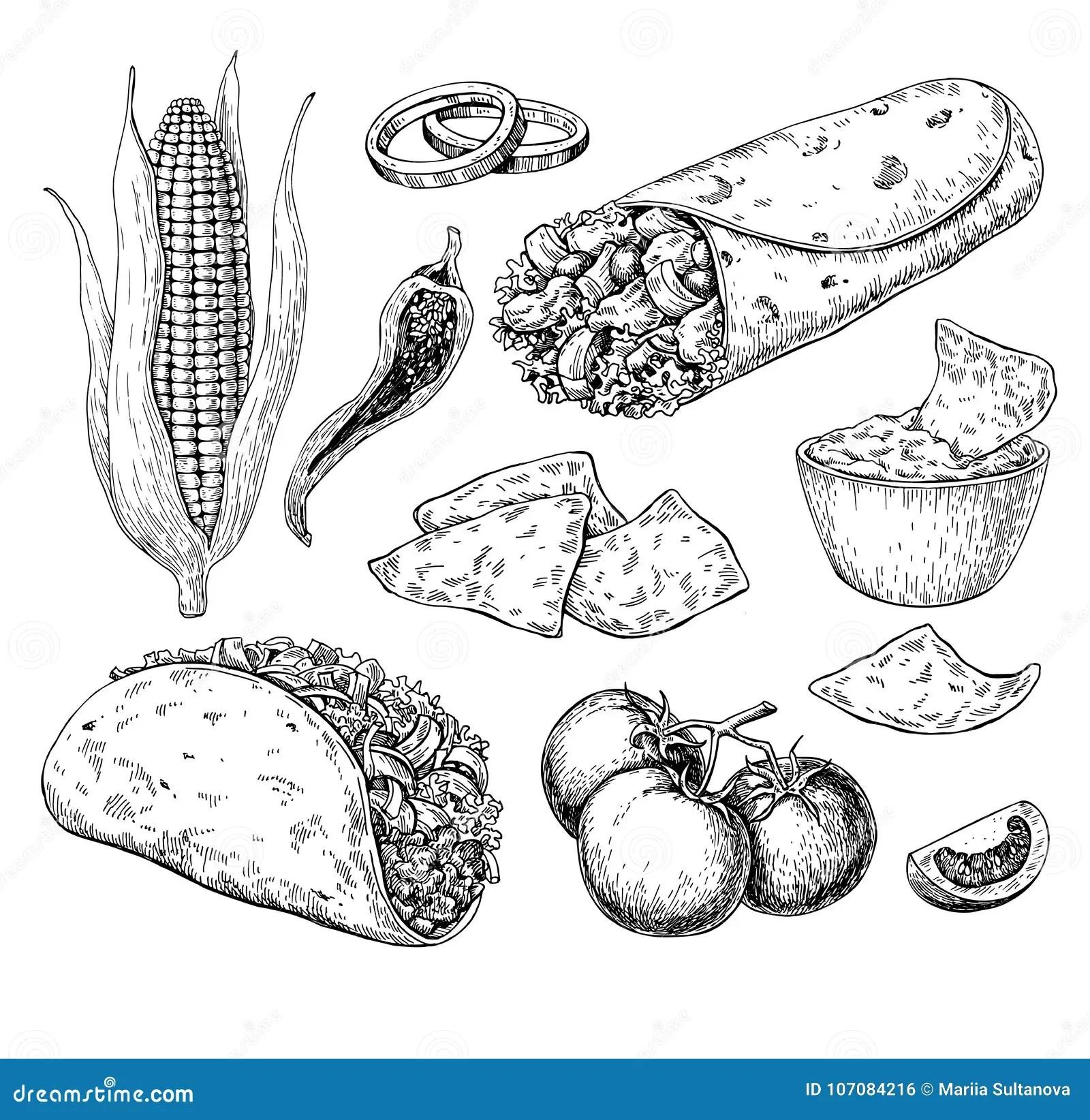 Desenho Mexicano Do Alimento Ilustracao Tradicional Do