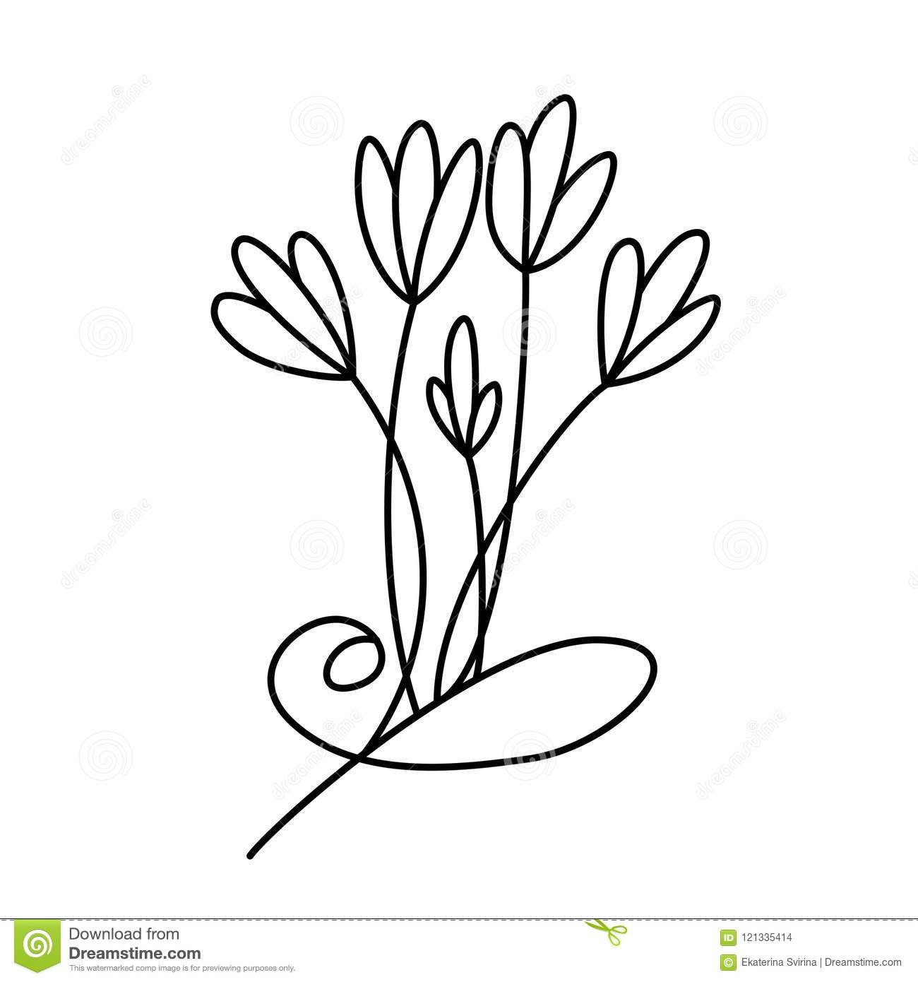 hight resolution of design with line art flowers transparent backdrop