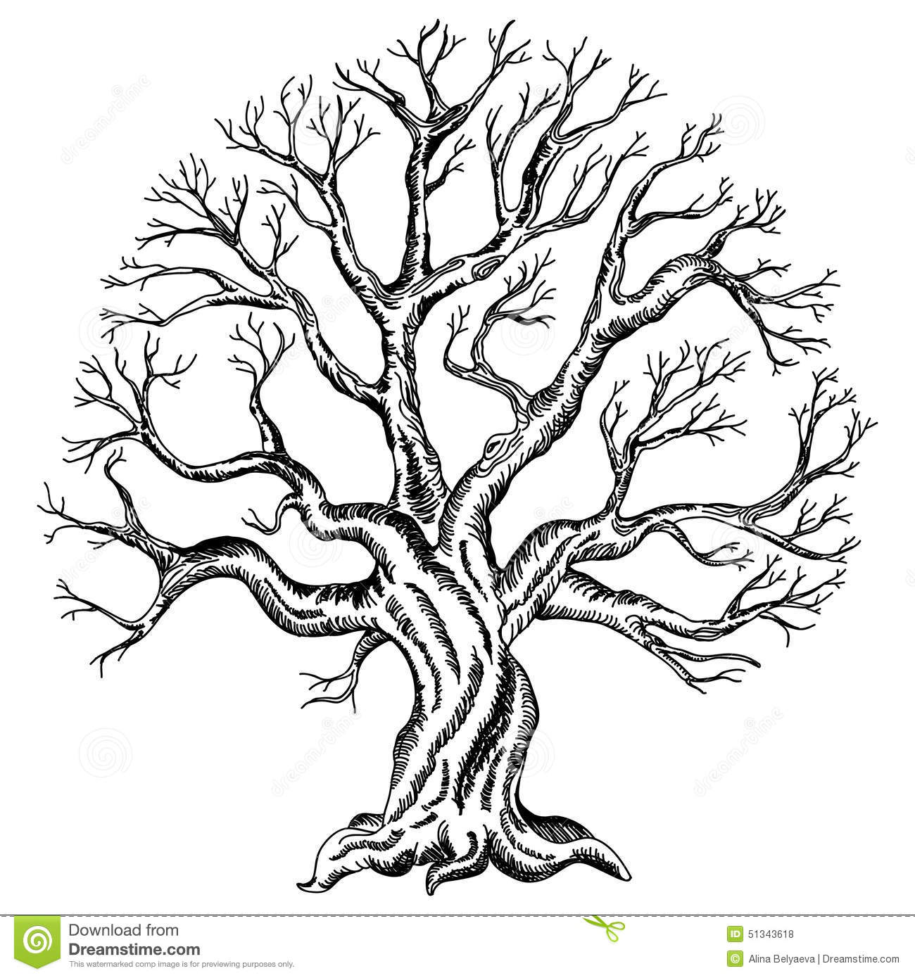 Dessin De Vecteur De L Arbre Illustration De Vecteur