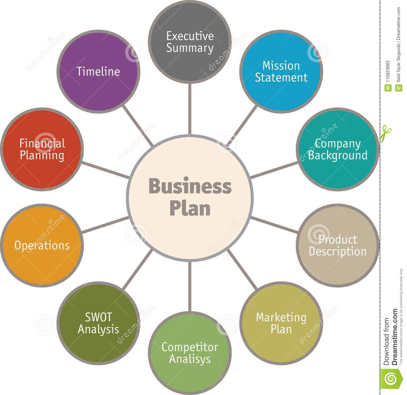hight resolution of diagram of business plan vector