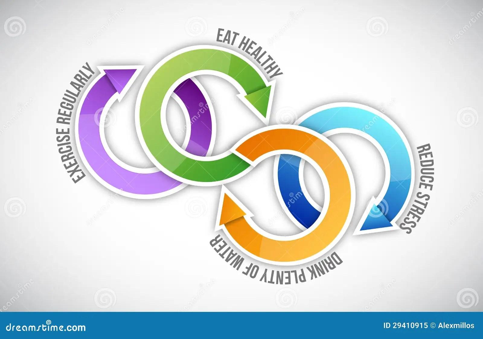 harvard food plate diagram shrew skeleton labeled healthy venn mehmomblog