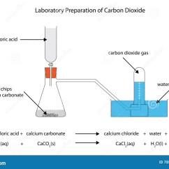 Palisade Cell Diagram Plant Briggs Amp Stratton Parts Brett Aqualine Wiring Cal Spas