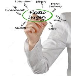 diagram of plastic surgery [ 1171 x 1300 Pixel ]
