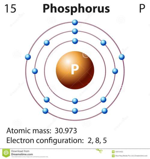 small resolution of diagram representation of the element phosphorus stock illustration phase diagram of phosphorus diagram of phosphorus