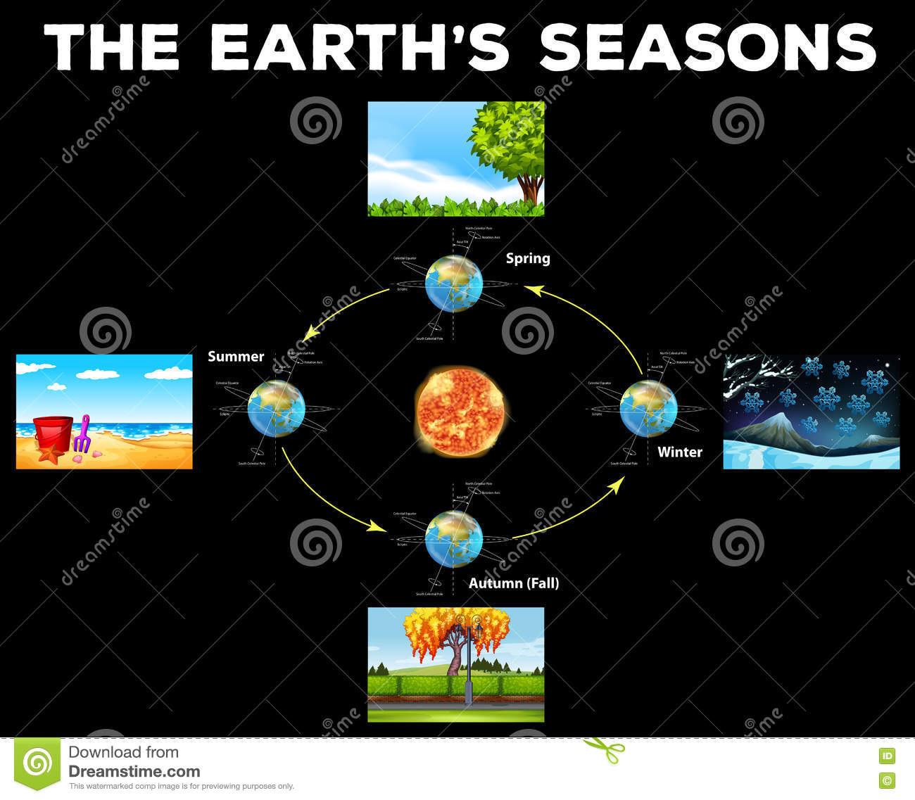 Diagram Showing Seasons On Earth Stock Vector