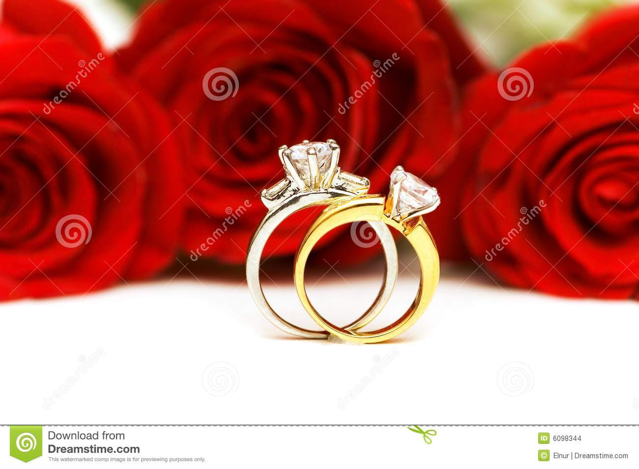 Diamond rings and roses stock photo Image of beautiful