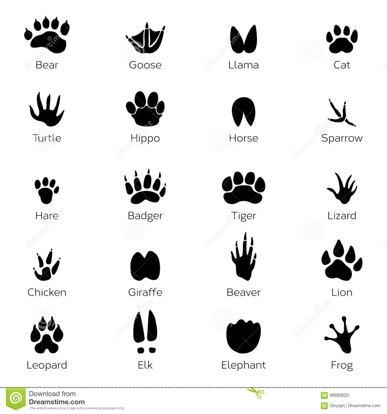 Different Footprints Of Birds And Animals Vector