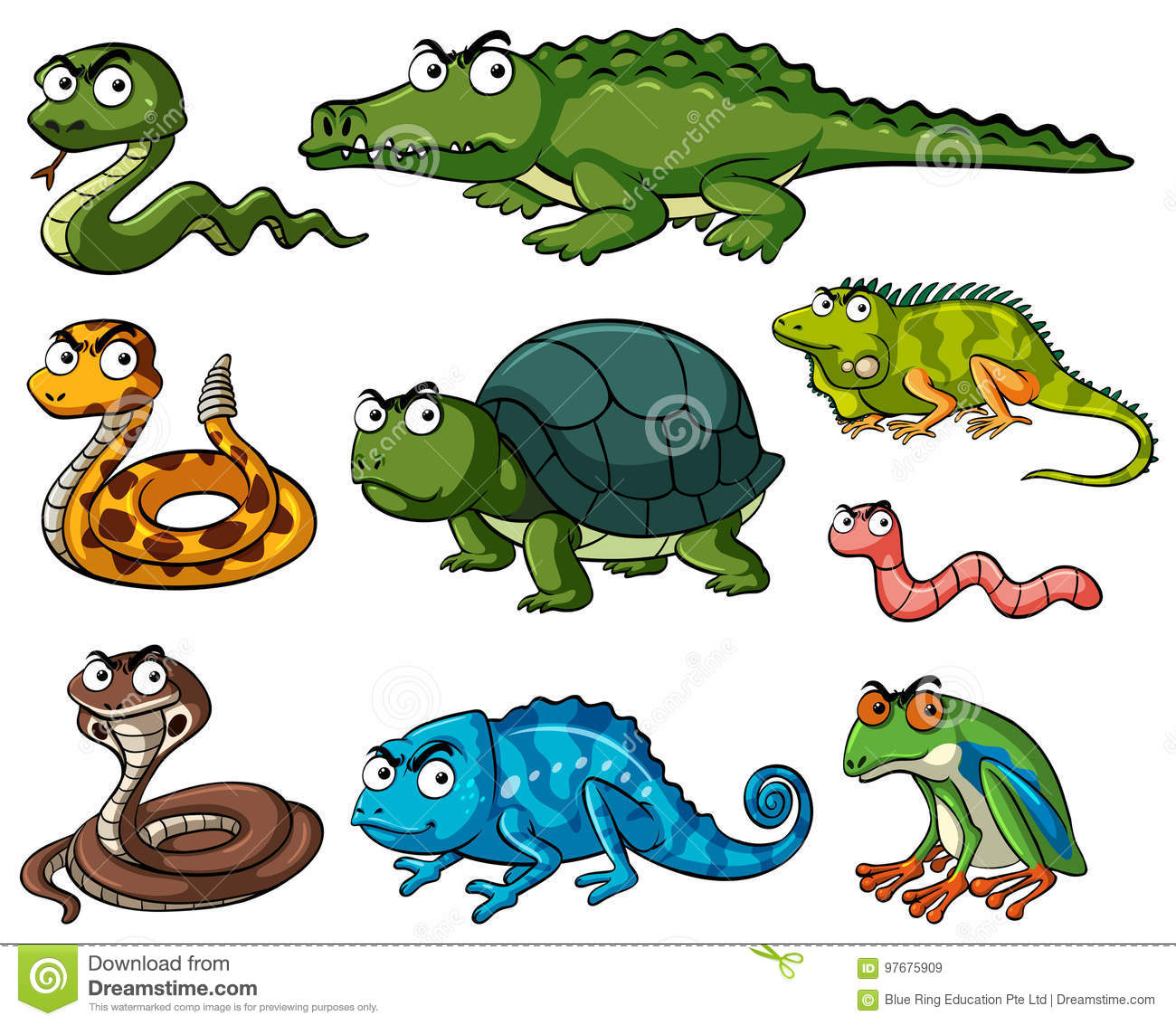 Different Kinds Of Reptiles Stock Vector