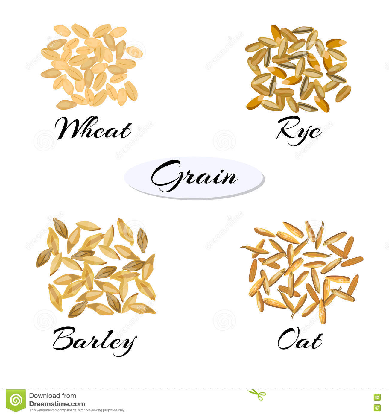 Types Of Grains Cereals Icons