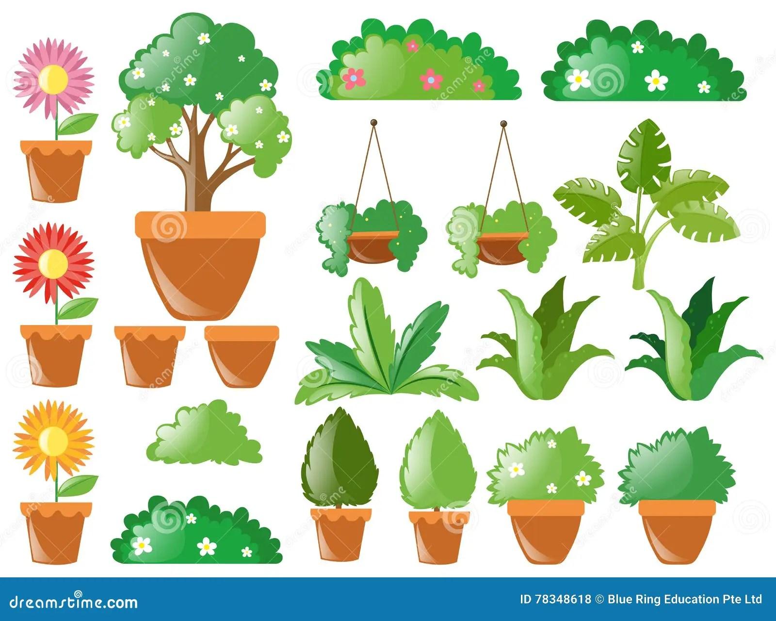 Garden Decoration Supplies