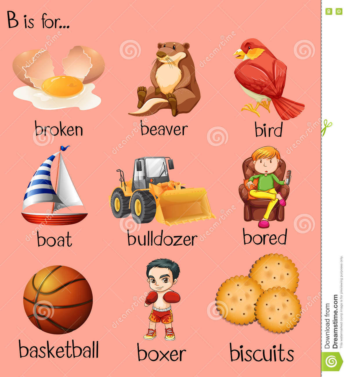 Different Words Begin With Letter B Stock Vector