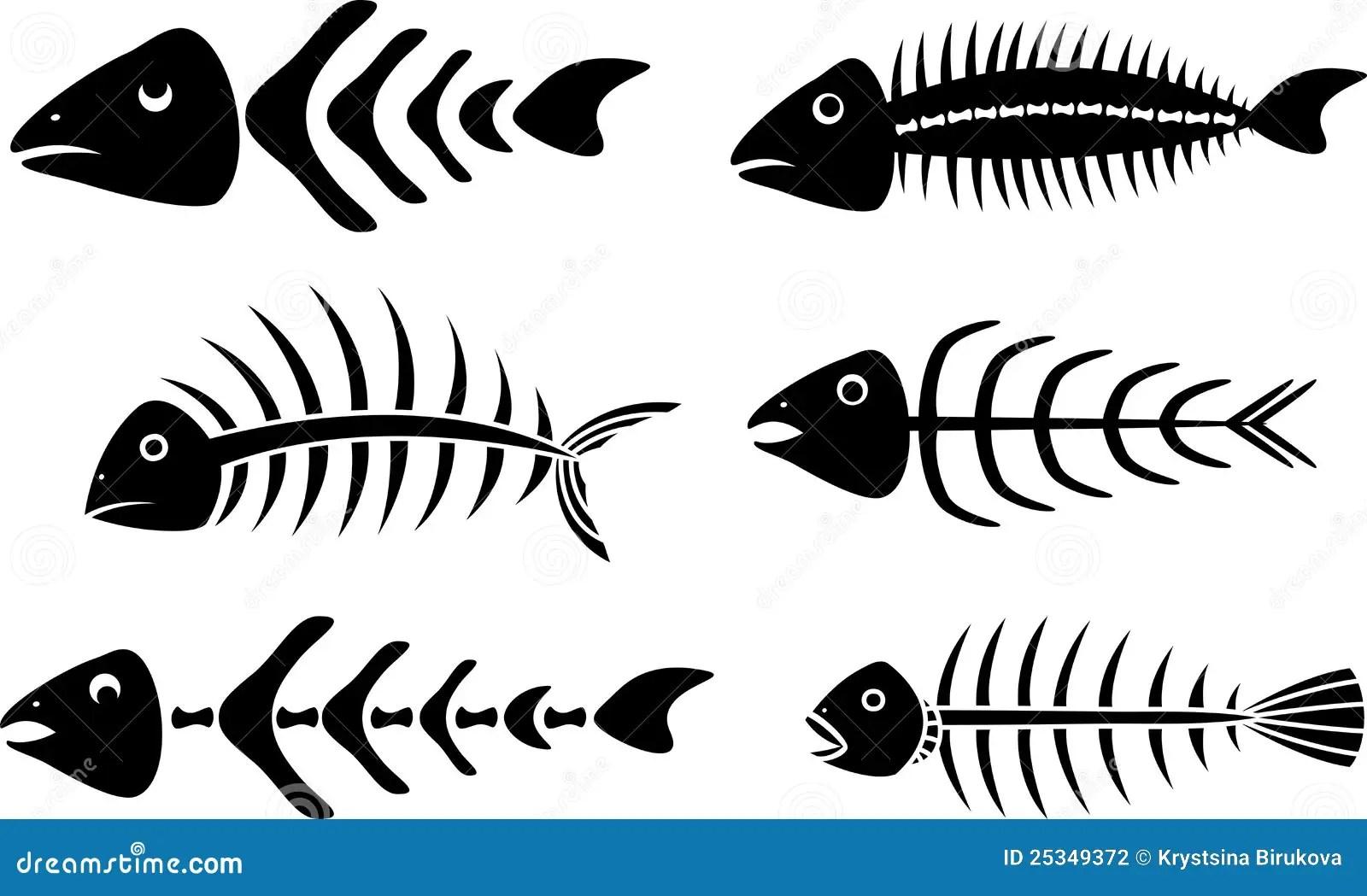 Divers Pochoirs D Aretes De Poisson Illustration De