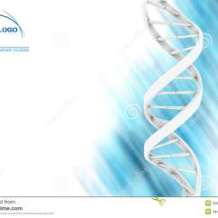 Blank Dna Diagram Domestic Fuse Board Wiring Ireland Royalty Free Stock Photo Image 5250585