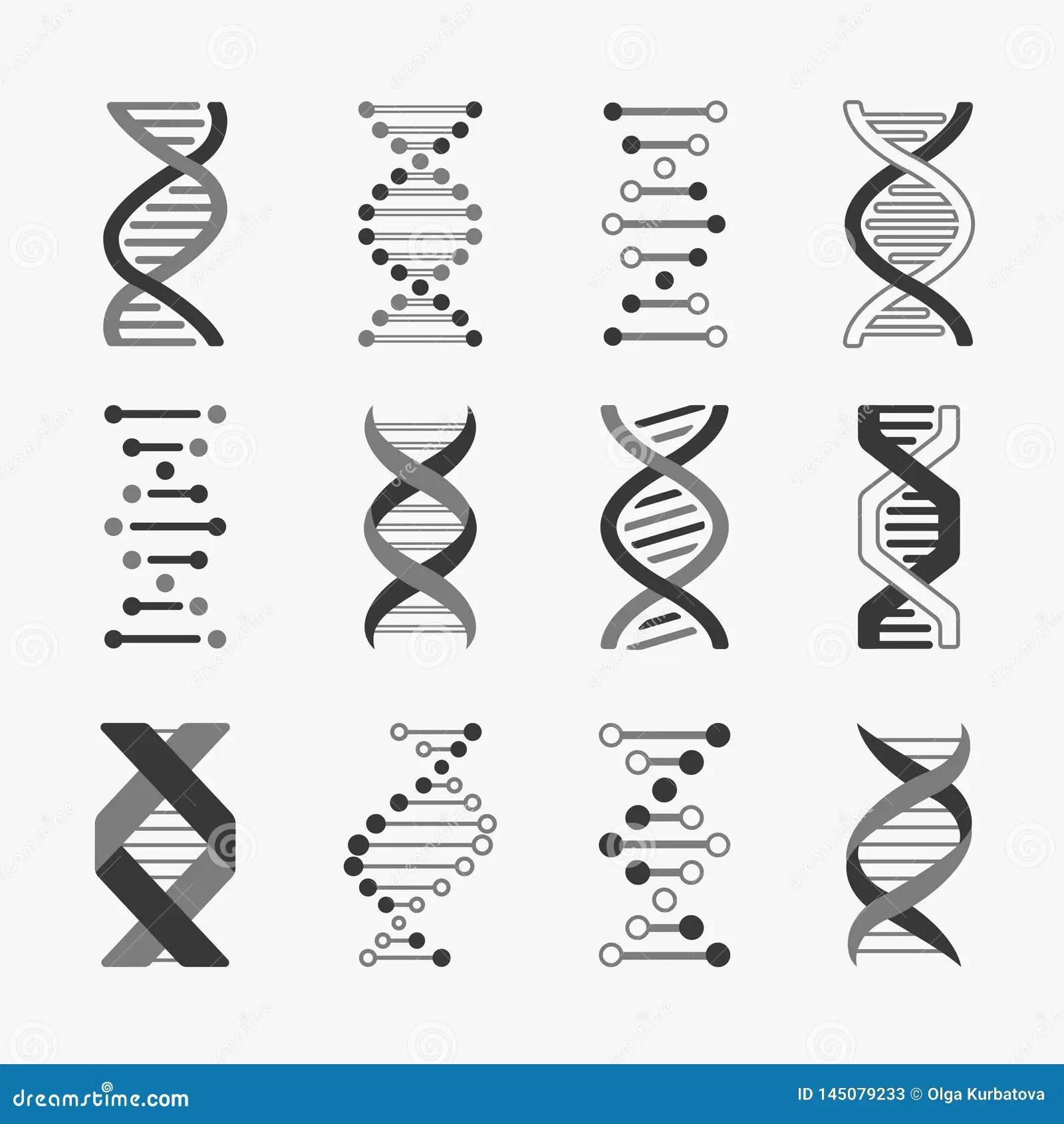 Dna Helix Cell Gene Structure Bioinformatics Spiral