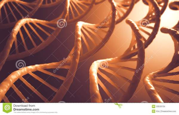 Dna Sequence Stock - 33533134