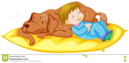 small resolution of dog and girl sleeping on mat