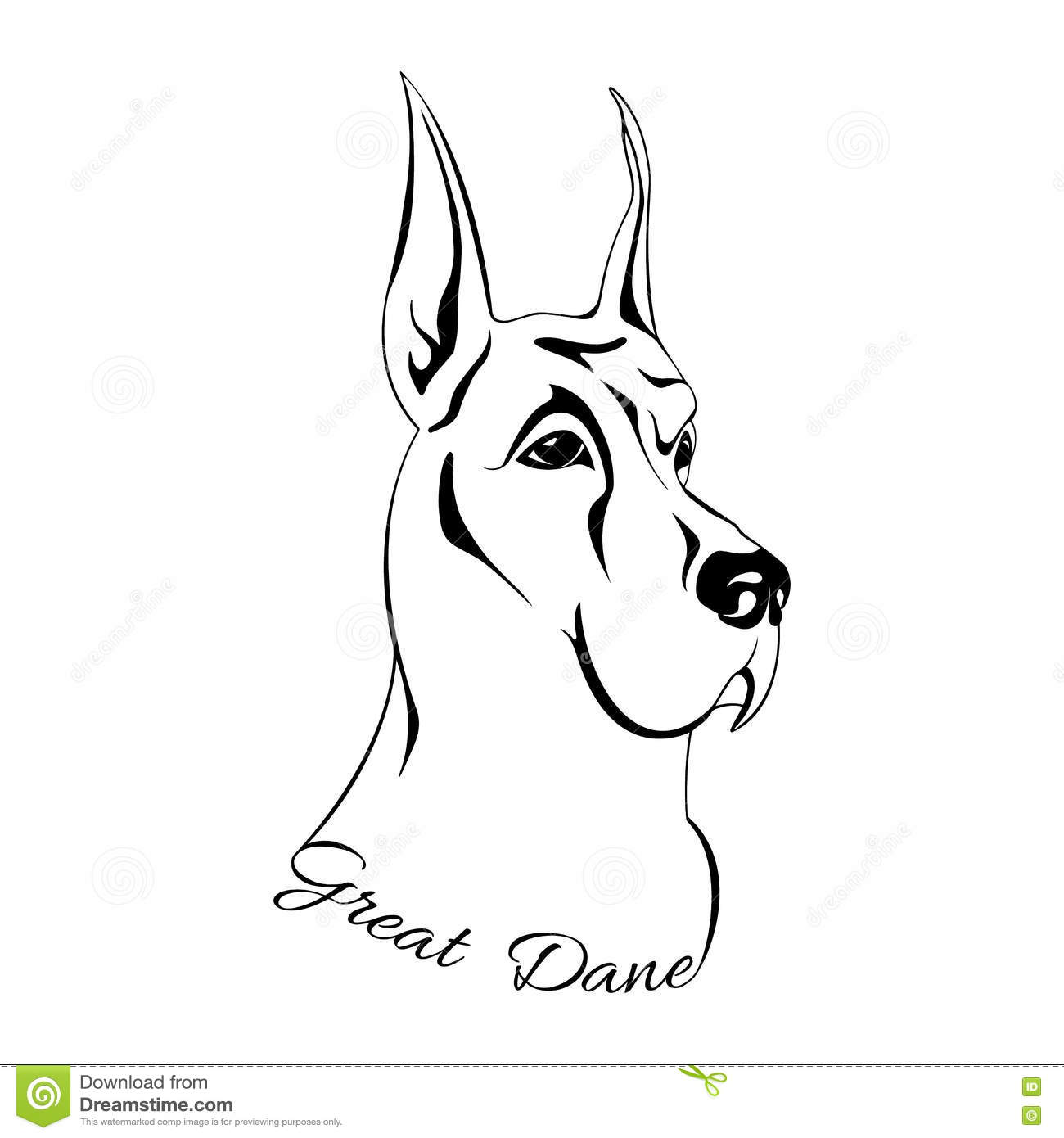 Dog Head Great Dane Stock Vector Illustration Of