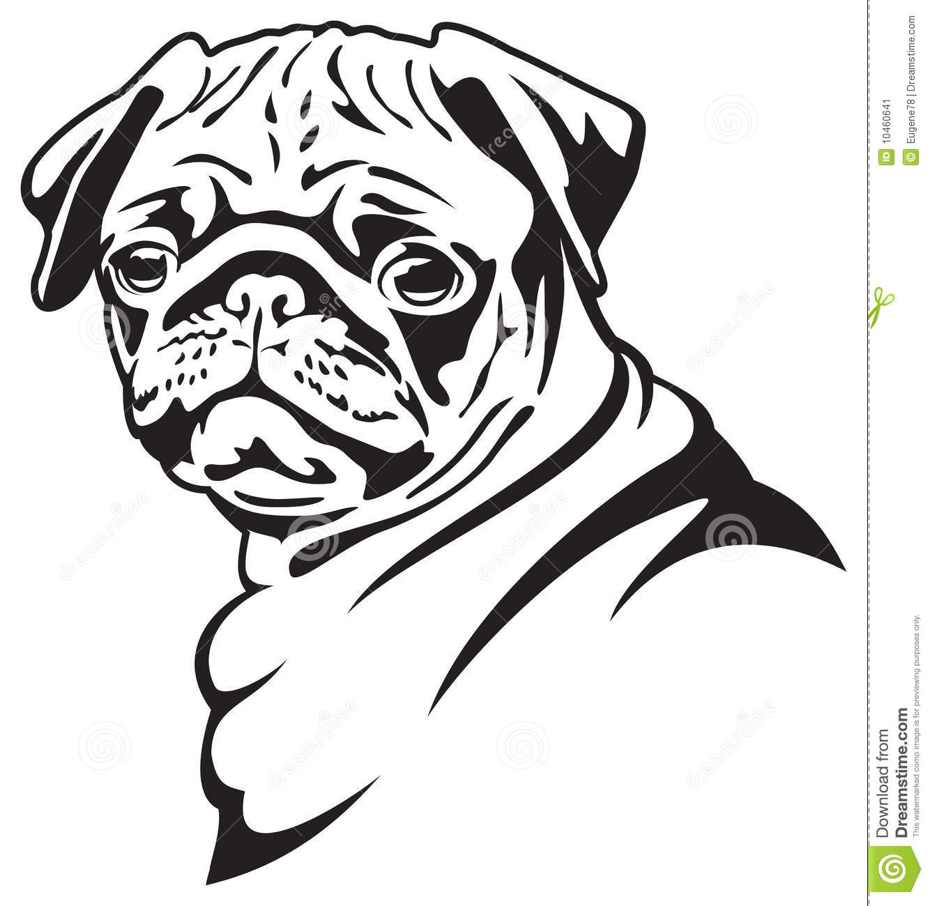 Dog Pug Stock Vector Illustration Of Portrait Animal