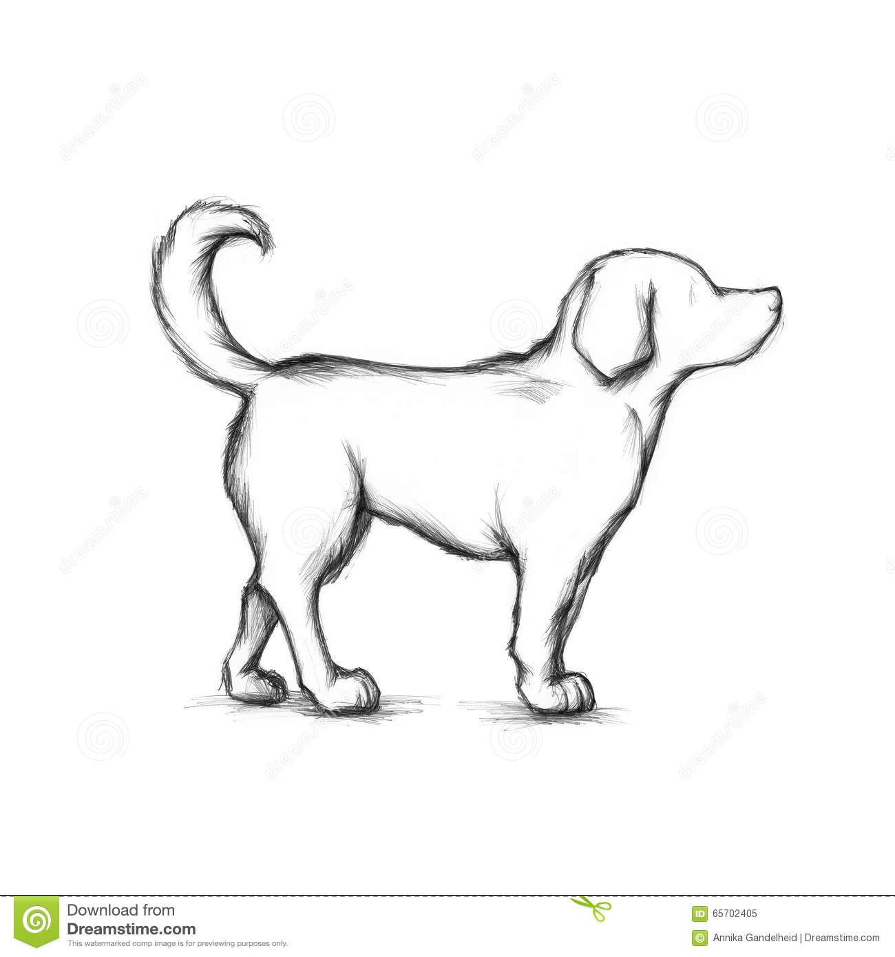 Dog Stock Illustration Image Of Member Drawing Paws