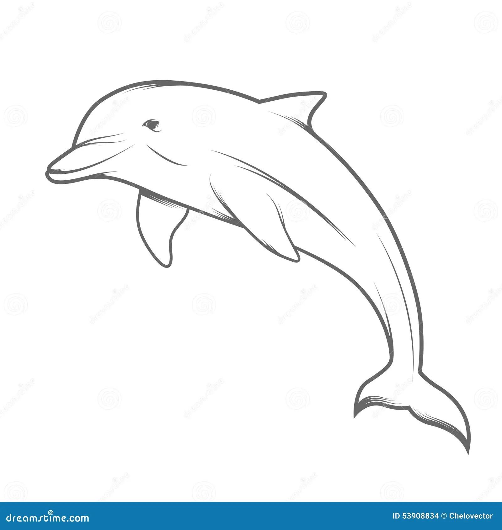 Dolphin Illustration Stock Vector Illustration Of Mammals