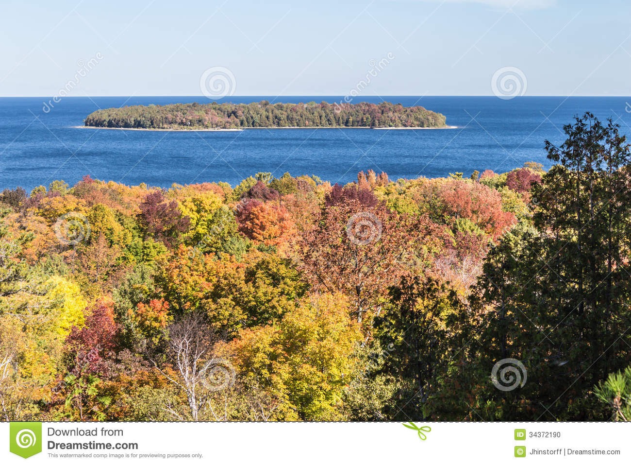Door County Color Trees