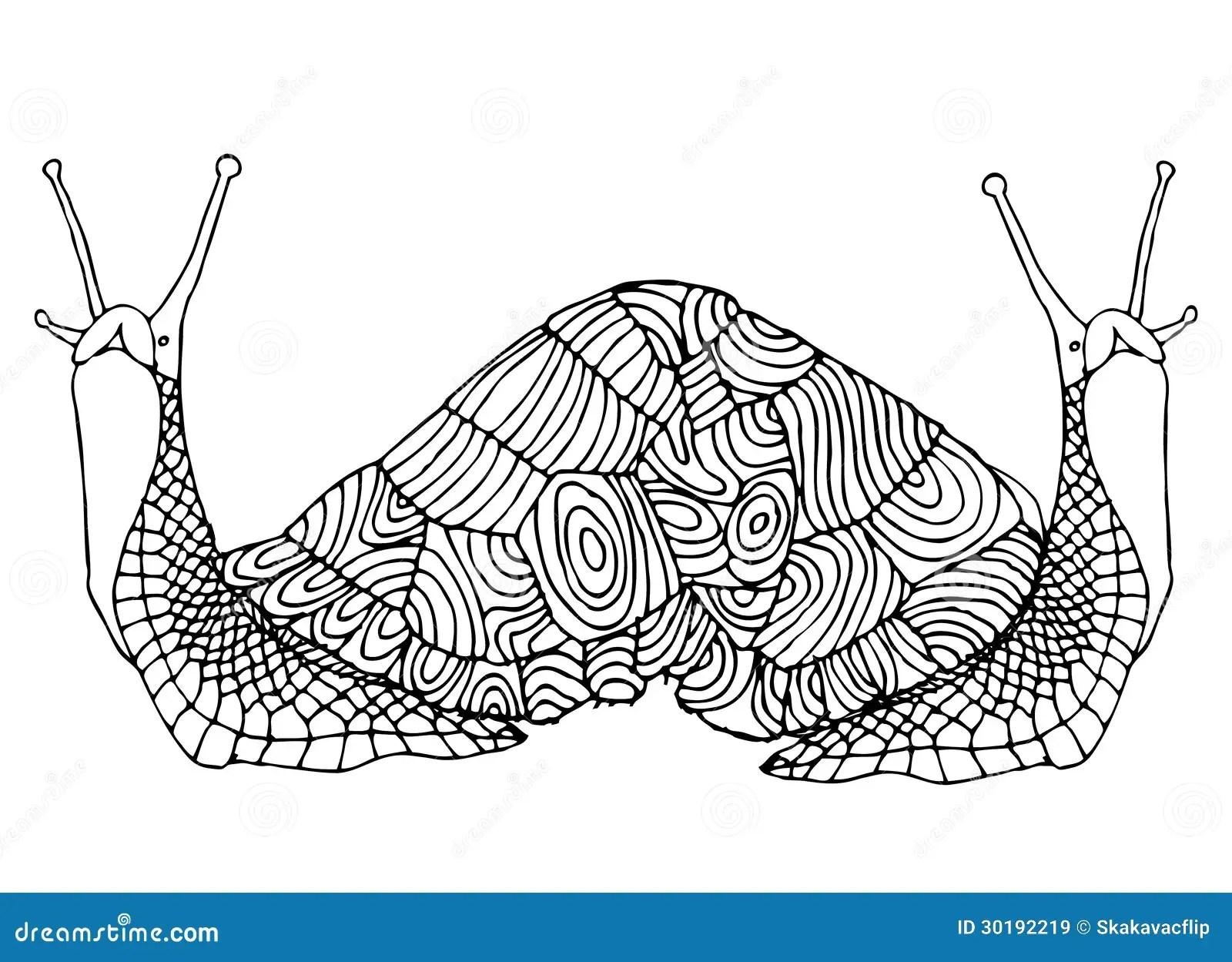 Double Snail Stock Illustration Illustration Of Fine