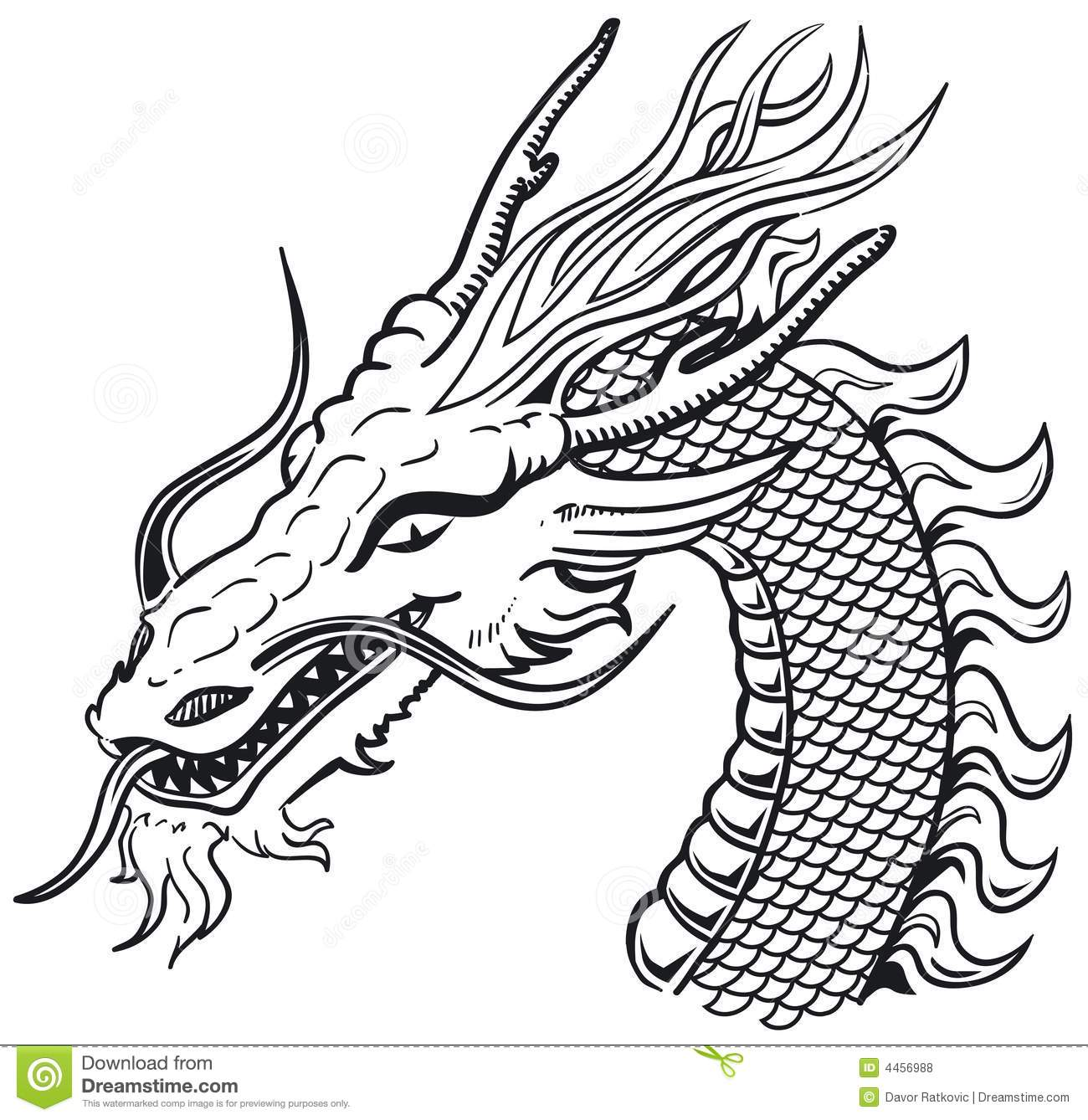 Dragon Head B Amp W Stock Vector Illustration Of Beast