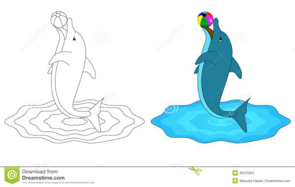 Dolphin Stock Vector. Illustration Of Foot Clipart - 30310264