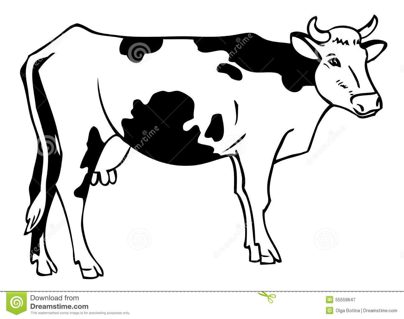 Drawing A Cow Stock Vector Illustration Of Cattle Farm