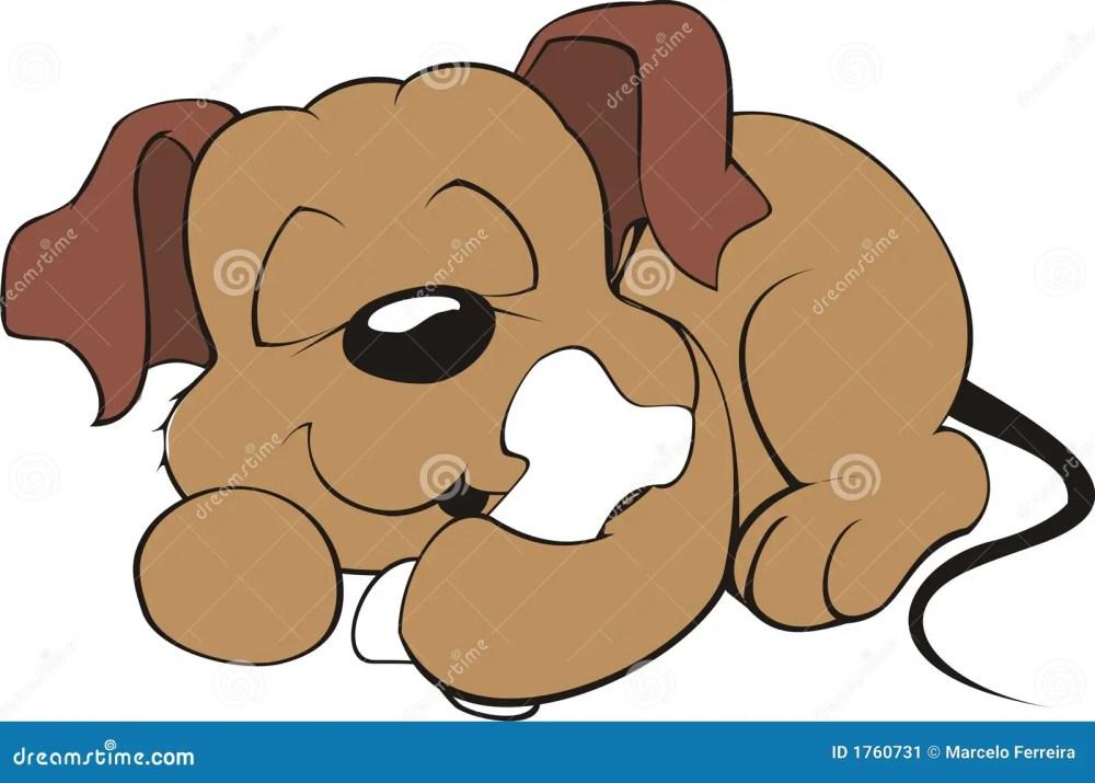 medium resolution of dog sleeping with a bone