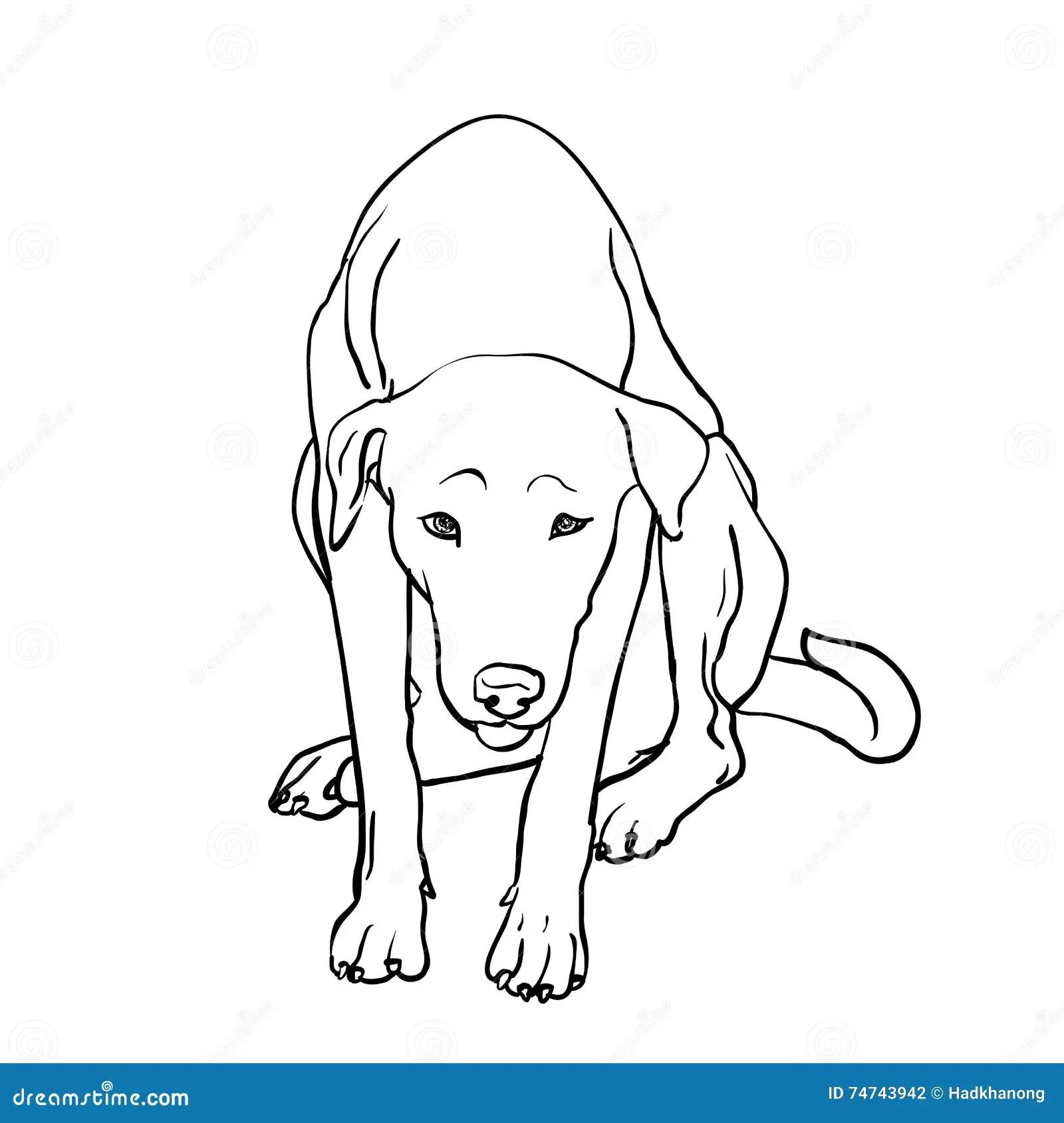 Drawing Of Sad Stray Dog Stock Vector Illustration Of