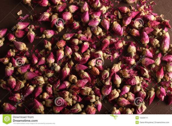Dried Rose Buds Stock Of Backgrounds Large