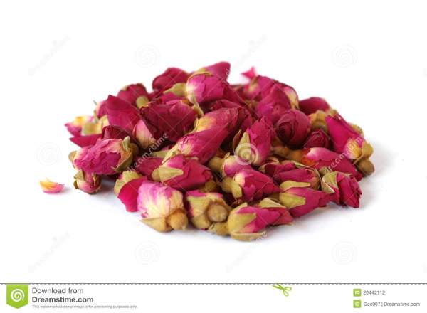 Dried Rose Buds Stock Of Isolation Isolated
