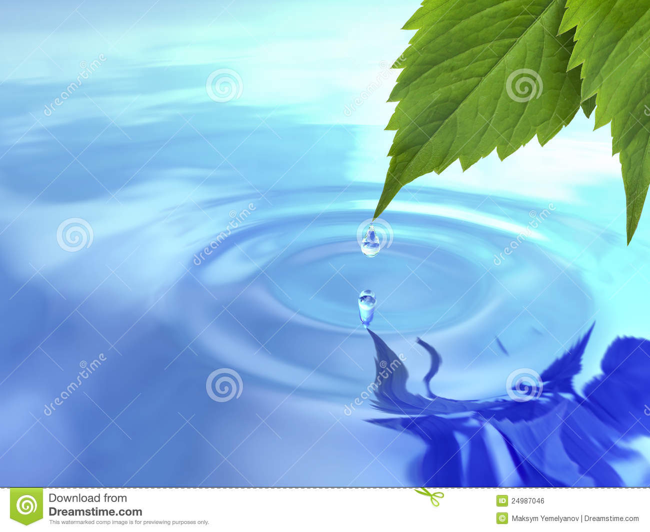 Falling Water Wallpaper Free Download Drop Fall From Leaf On Ripple Water Stock Illustration