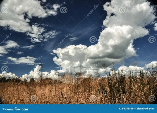 Blue Sky With Cumulus Clouds Stock Cartoondealer