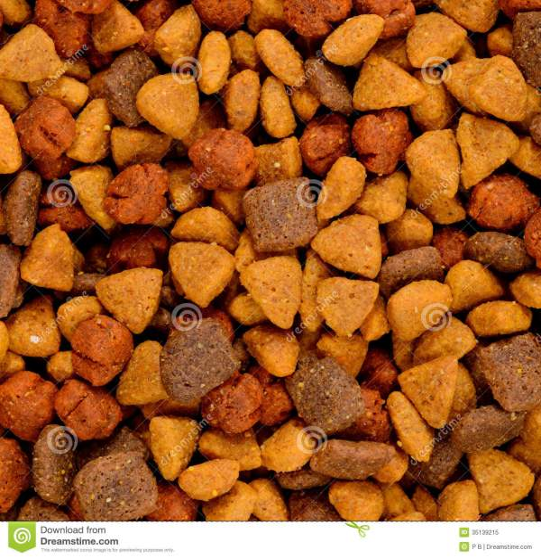 Dry Dog Food Royalty Free Stock - 35139215