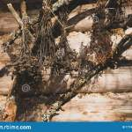 Dry Flowers Bouquet Hanging On A Wooden Wall Of The Old Forest House Legend Fairy Tale Ethnic Pagan Background Sunny Sunset Stock Image Image Of Ritual Brown 177432213