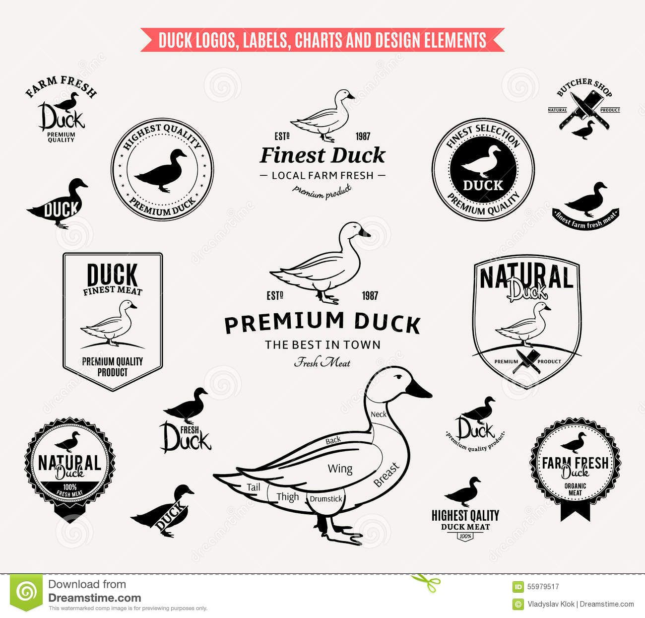 Duck Logos Labels Charts And Design Elements Stock