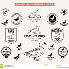 Duck Wing Diagram How To Wire A Hot Rod Logos Labels Charts And Design Elements Stock