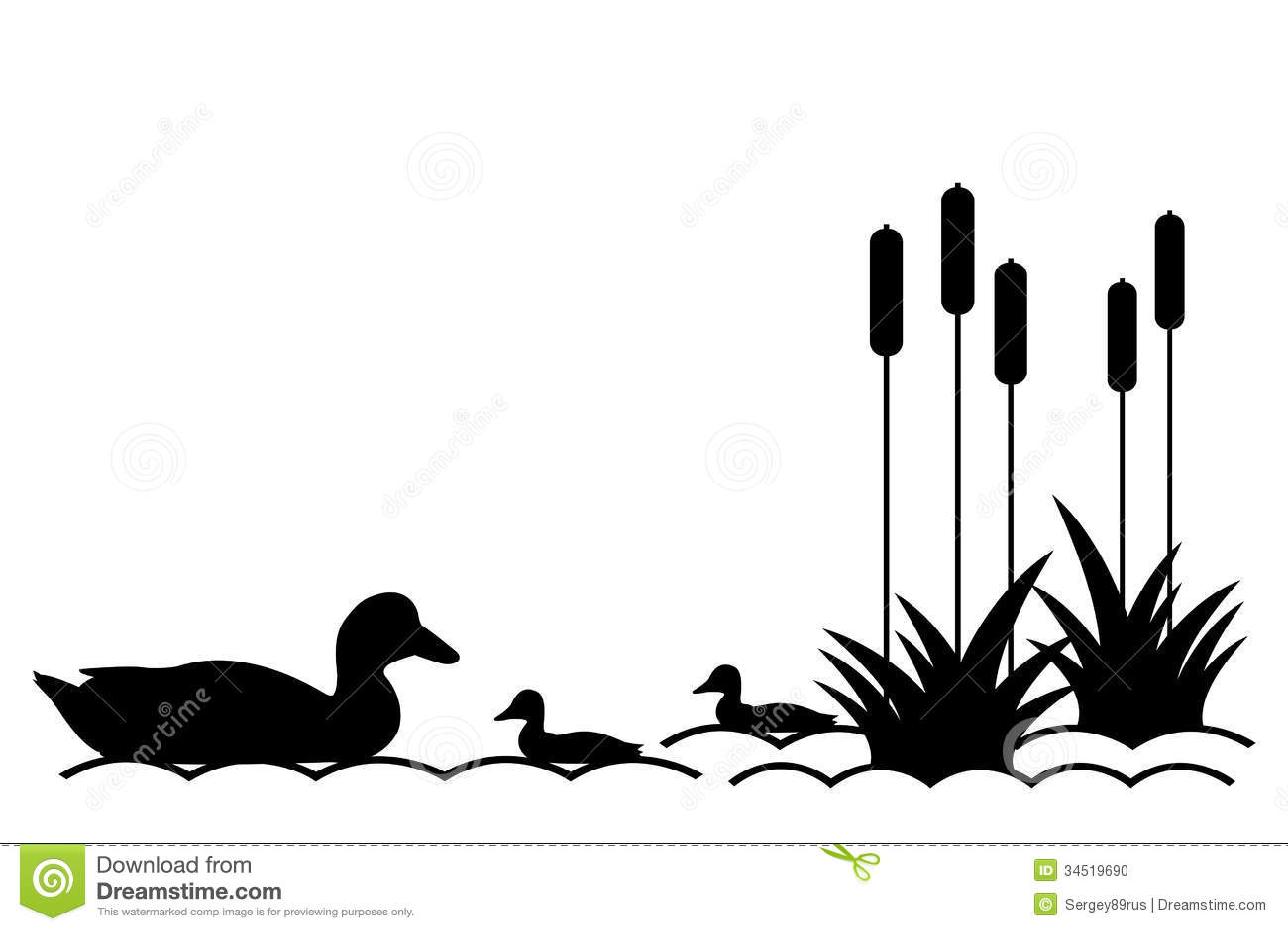 Ducklings In Lake Stock Vector Illustration Of Scene