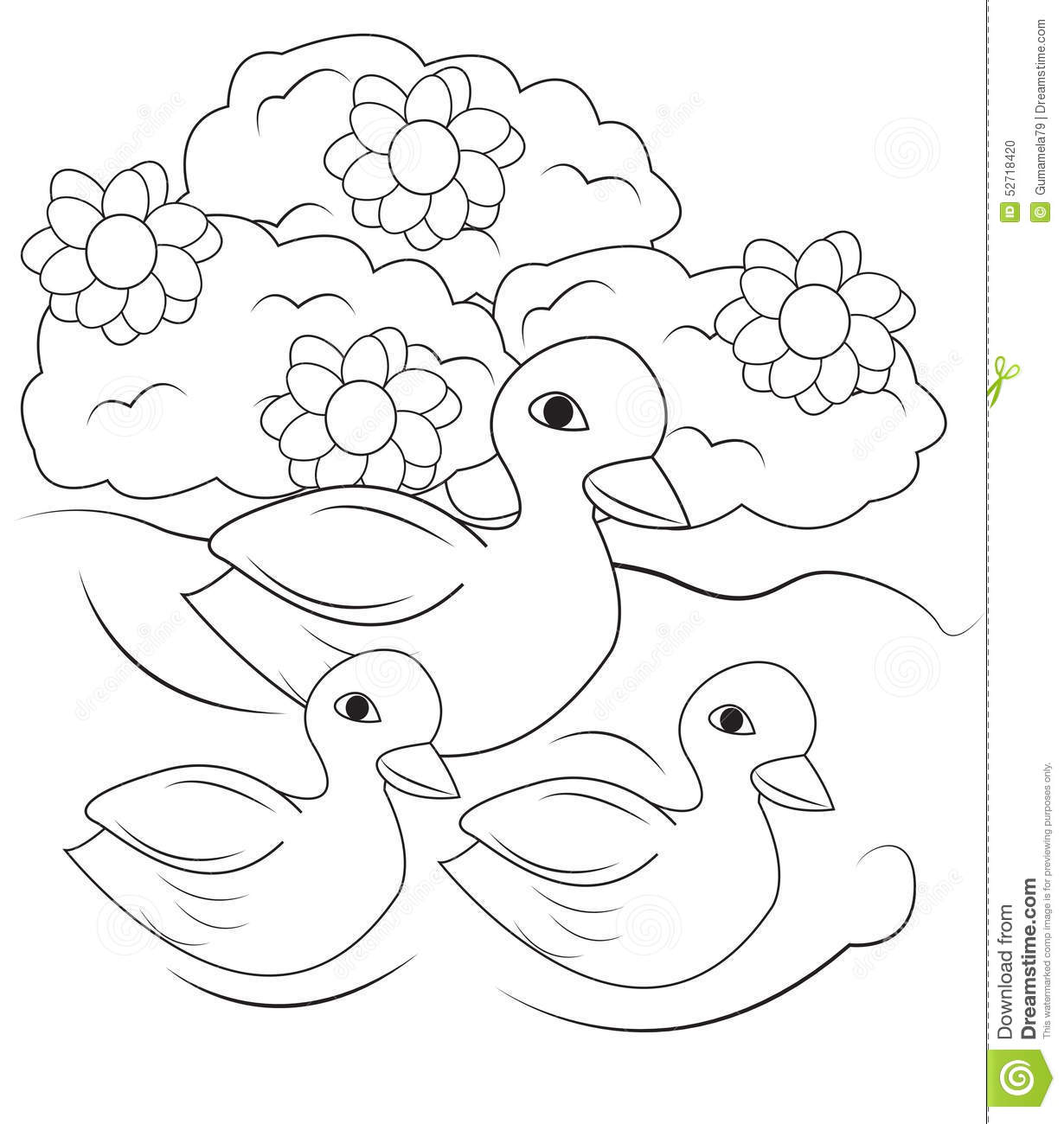 Ducks Swimming In The Pond Coloring Page Stock