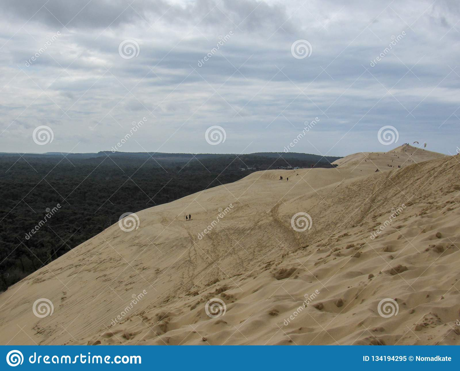 dune of pyla at arcachon bay atlantic ocean from the summit famous tourist destination in in europe arcachon bay aquitaine france