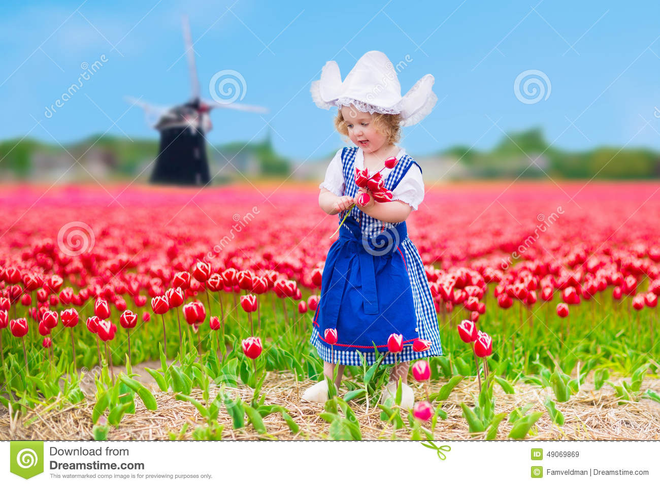 Dutch Girl In Tulip Field In Holland Stock Photo  Image