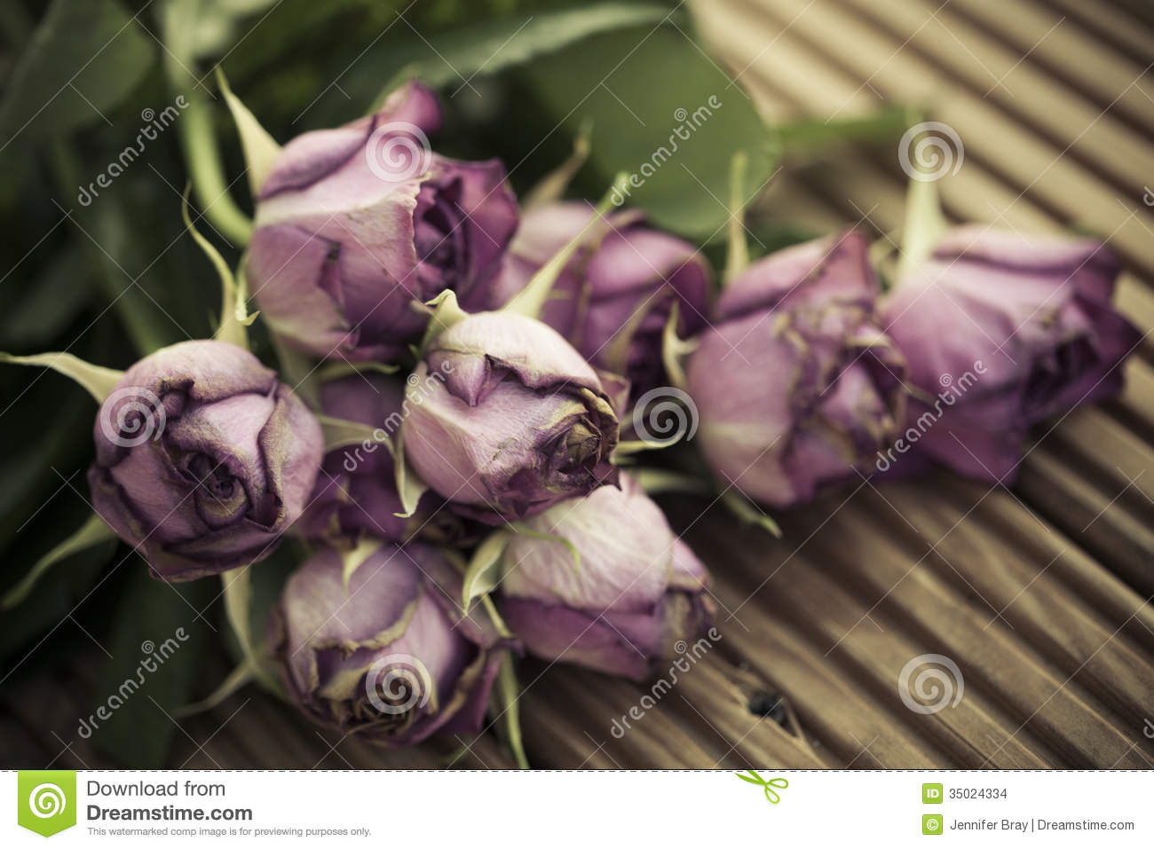 Dying Wilted Roses On Wooden Decking Background Stock Images  Image 35024334